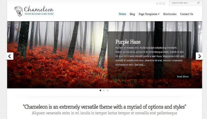 Thèmes de portefeuille pour votre site Web dans WordPress