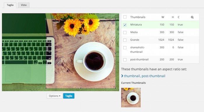 Modifier les vignettes de votre site avec les plugins WordPress