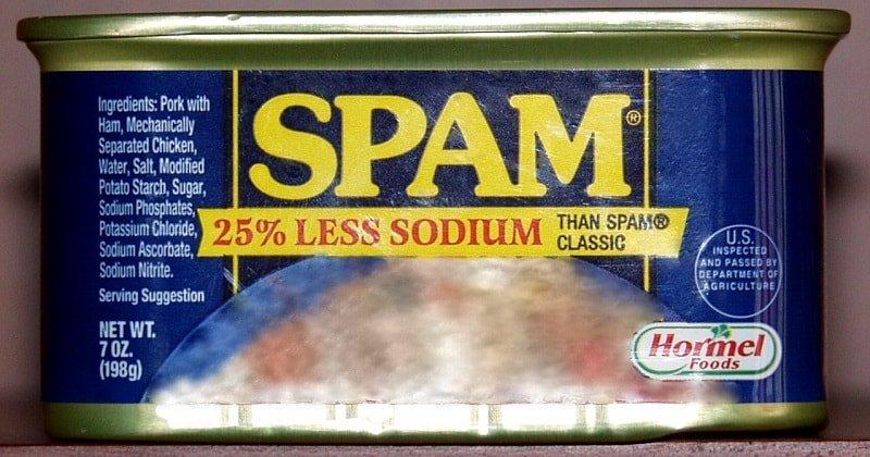 Que signifie SPAM et quels sont les différents types de spam ?